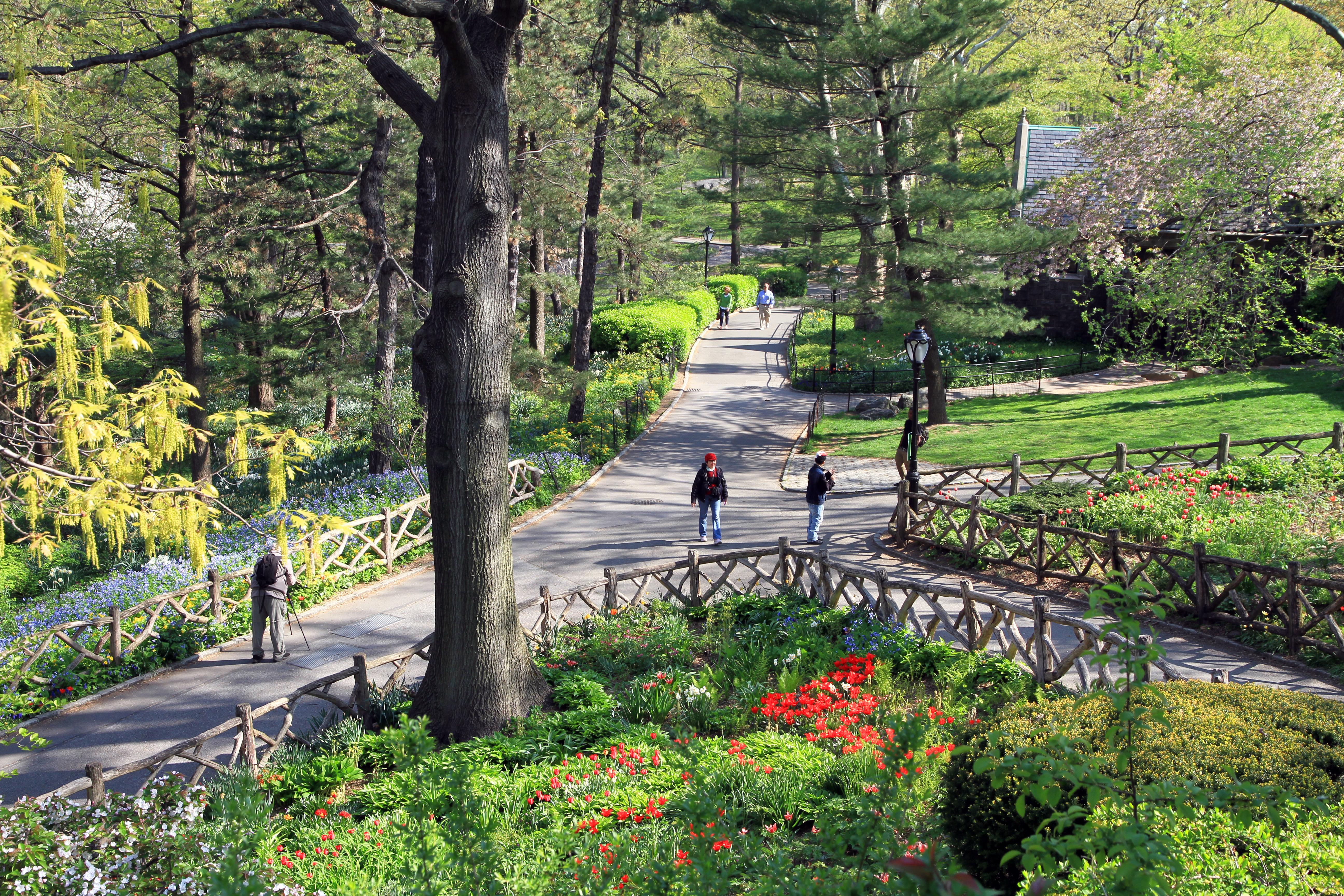 fileusa nyc central park shakespeare garden0jpg - Shakespeare Garden Central Park