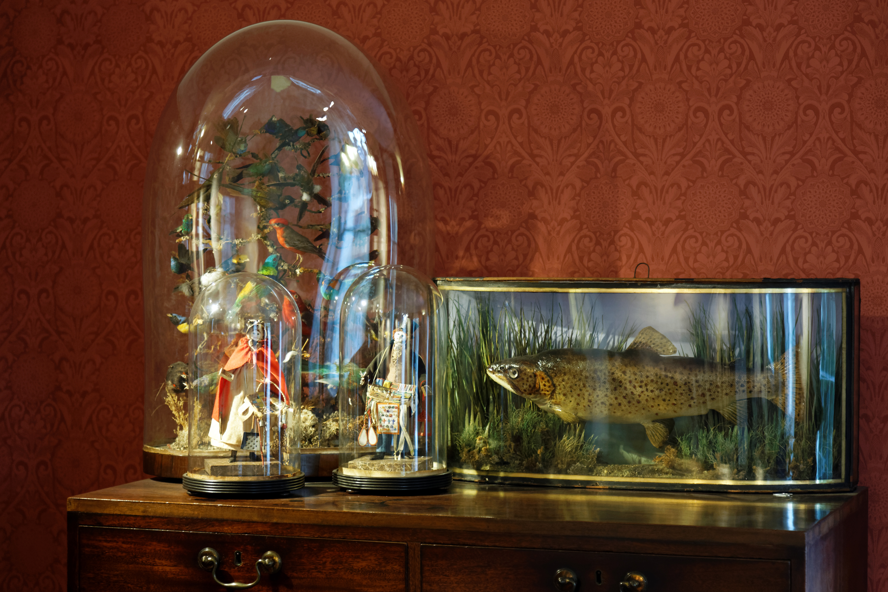 For Sale Glass Jewelry Store Cabinets Maryborough
