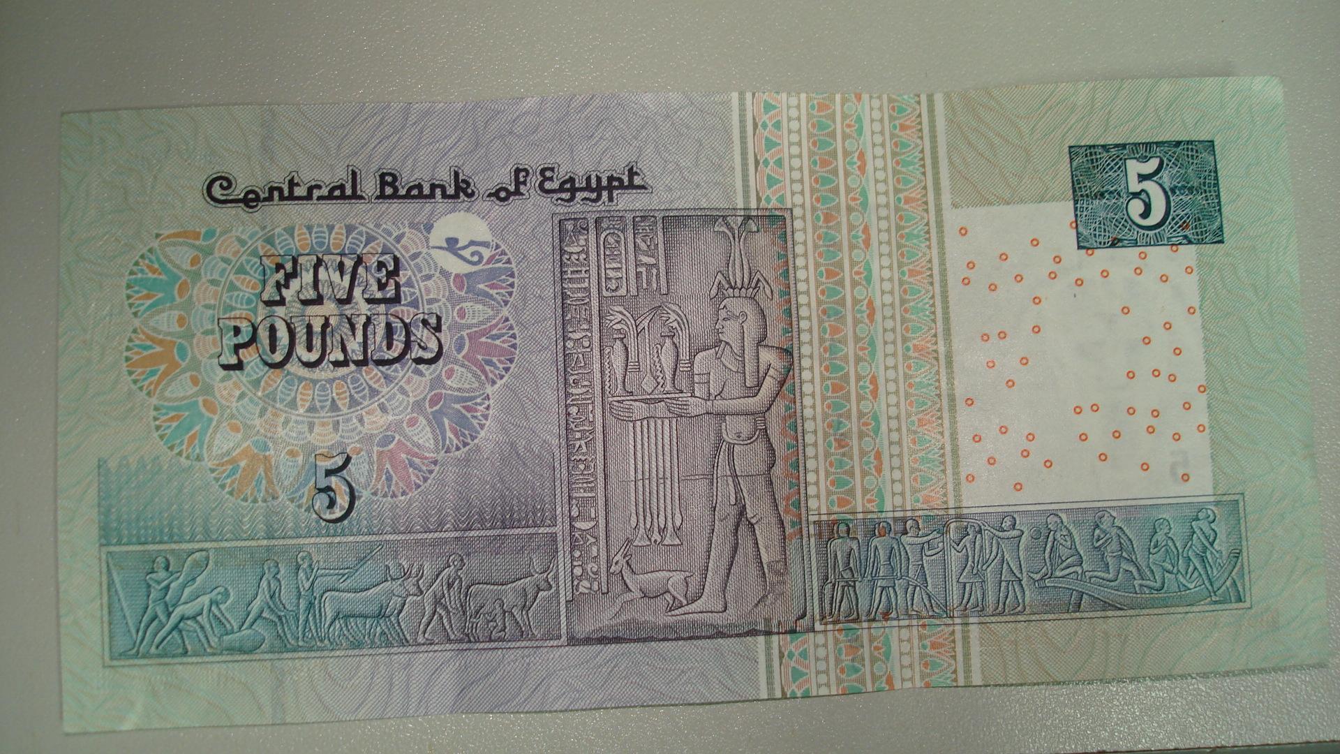 Картинки по запросу 5 EGP pound