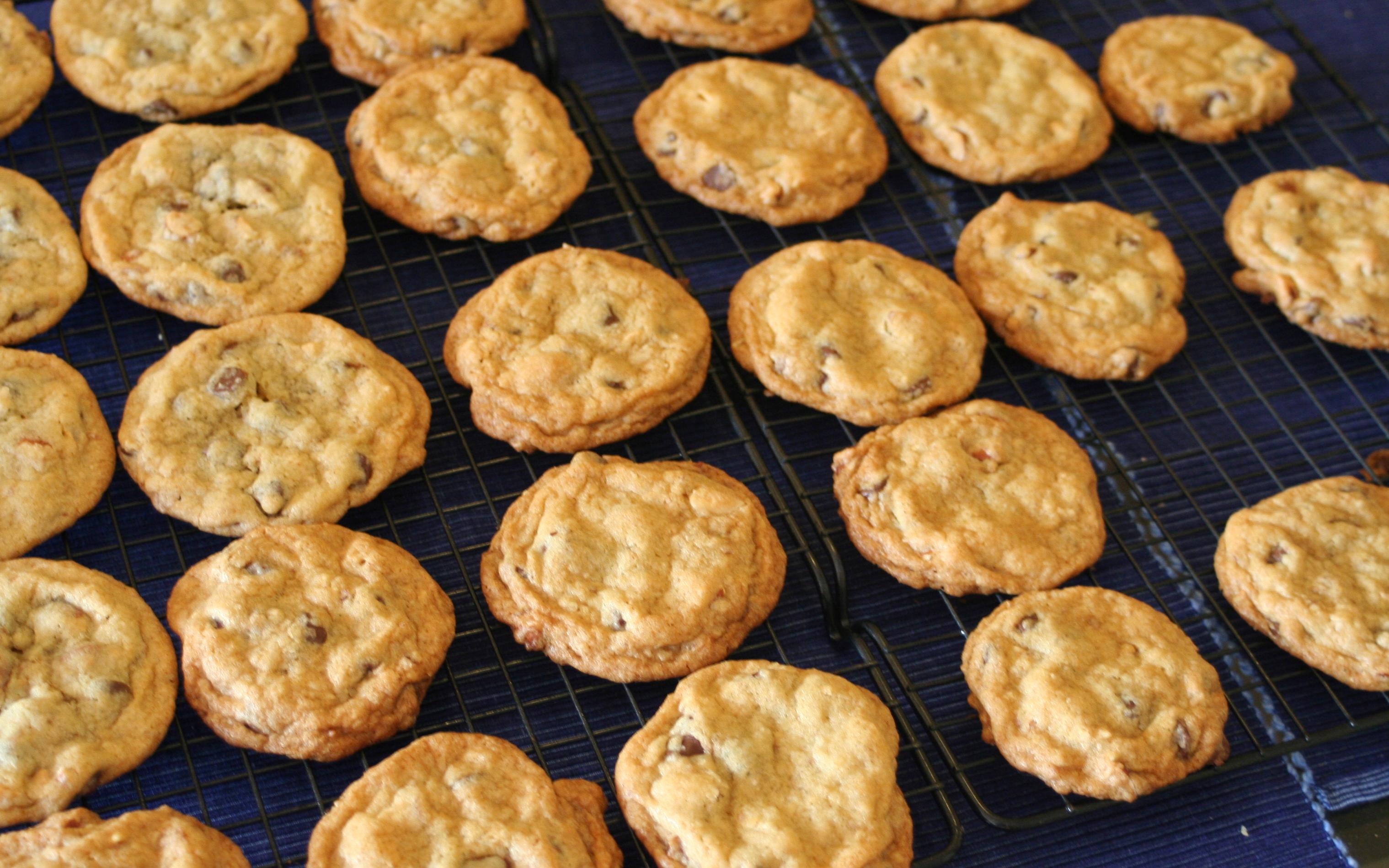 Description Almond chocolate chip cookies on wire rack, June 2009.jpg