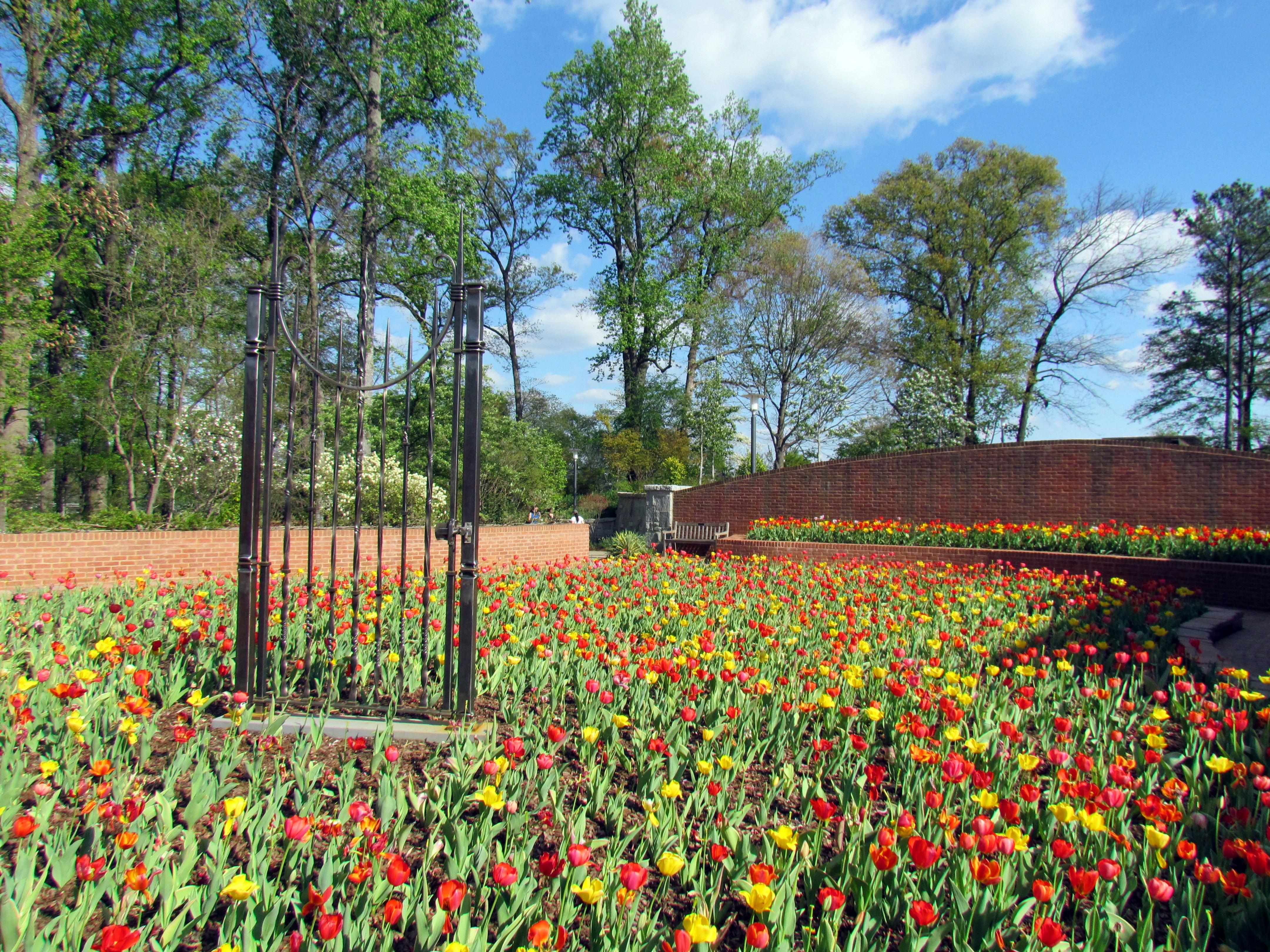 File:Atlanta Botanical Garden 1