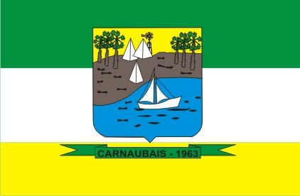 Ficheiro:Bandeira de Carnaubais-RN, Brasil.png
