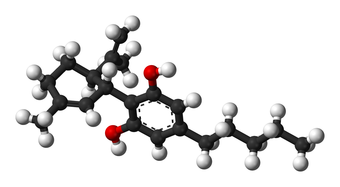 3D diagram of the CBD molecule