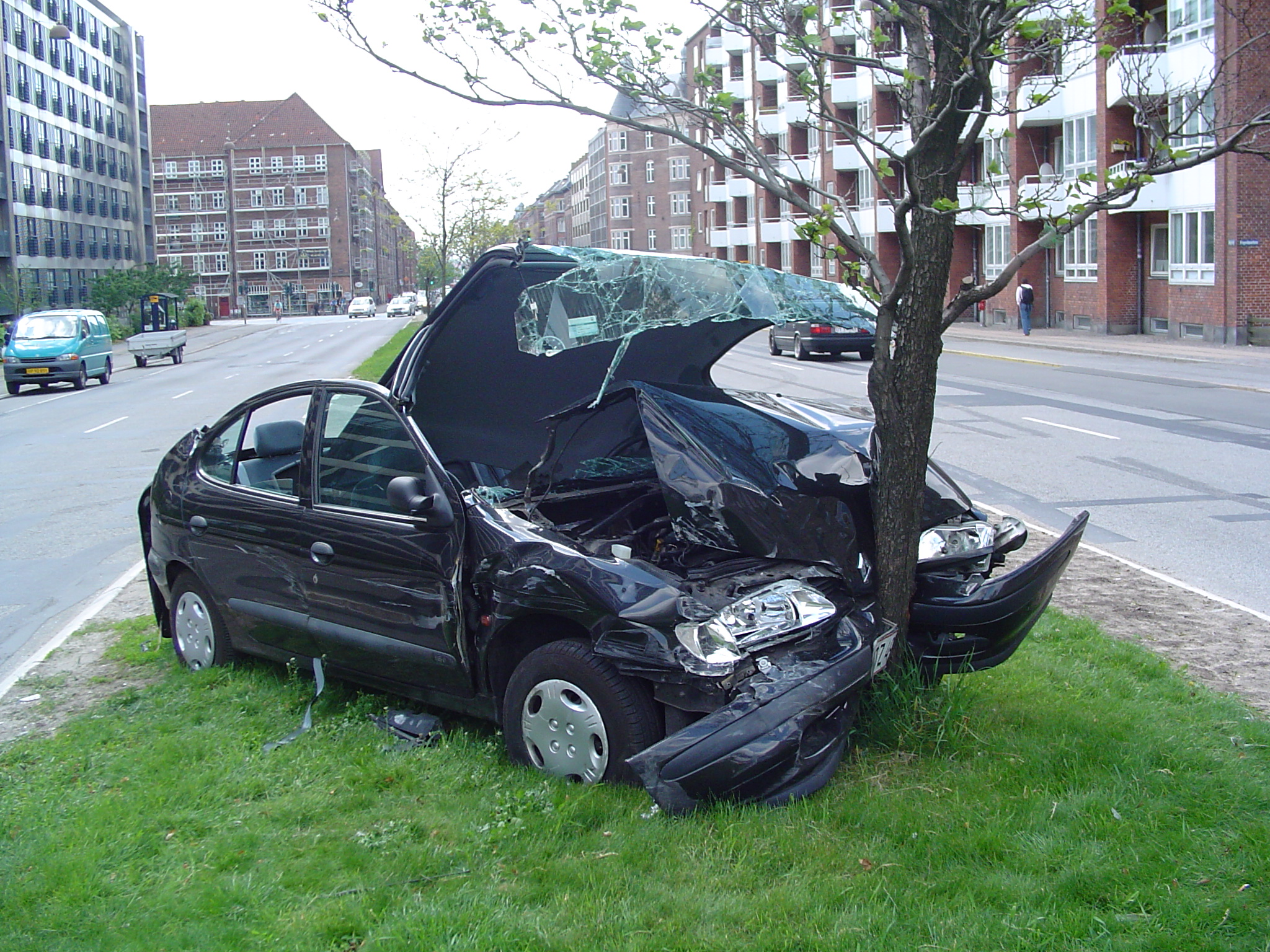 Image result for white car crash into tree