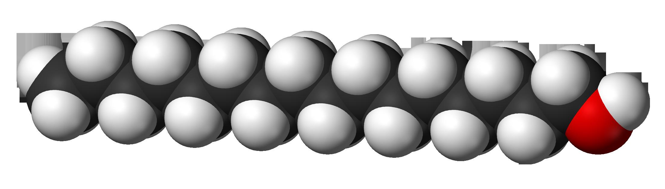 Chem103csu Cetyl Alcohol