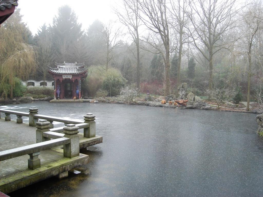 Bestand chinese tuin vijver en wikipedia for Tuin en vijver