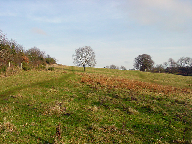 Climb up to Cadbury Camp - geograph.org.uk - 110503