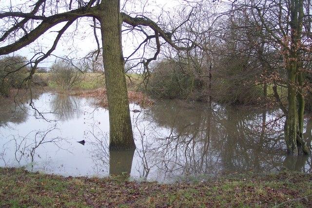 Drainage Pond near Goose Green - geograph.org.uk - 1618625.jpg