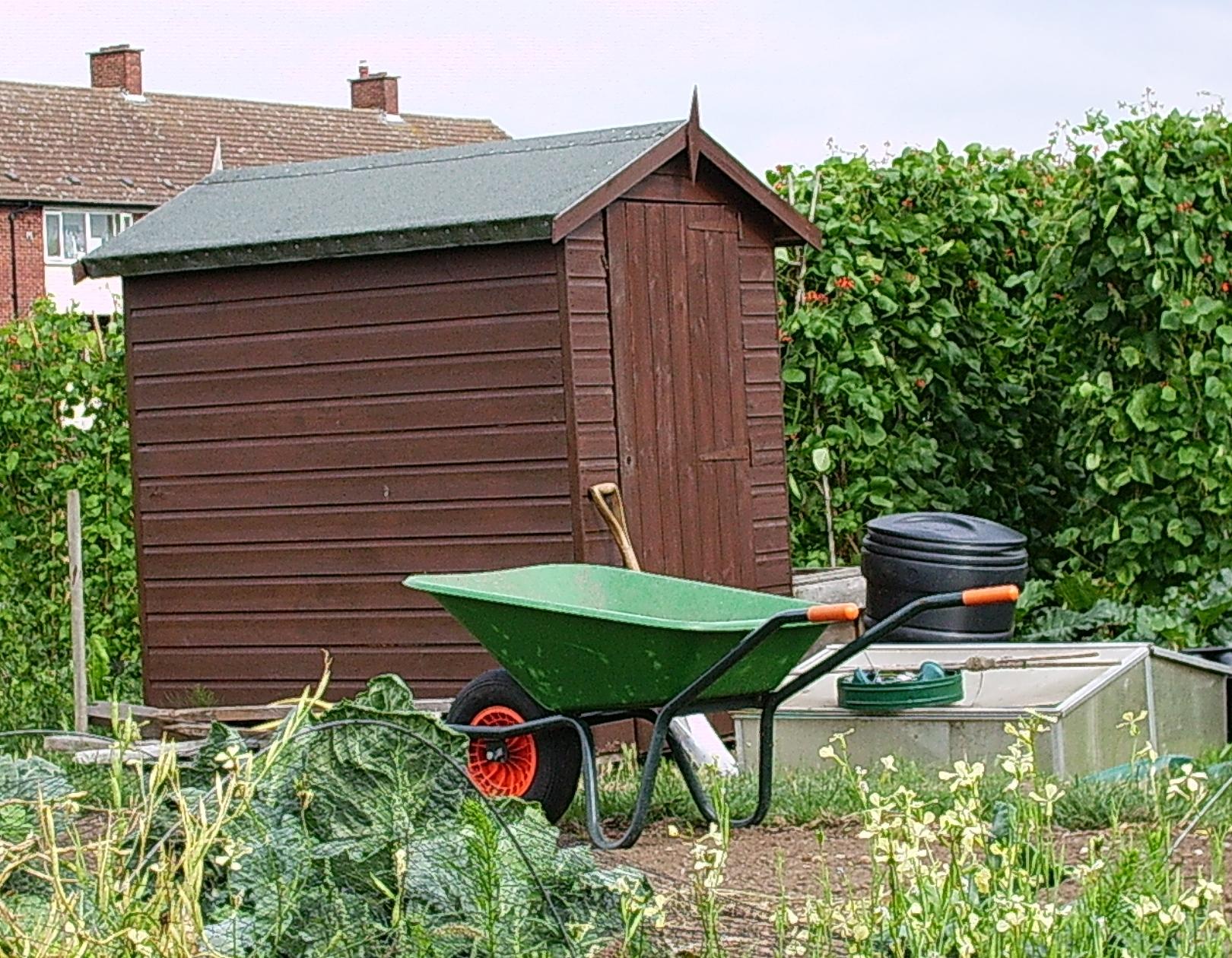 File:Elmgrove allotment shed.jpg - Wikimedia Commons