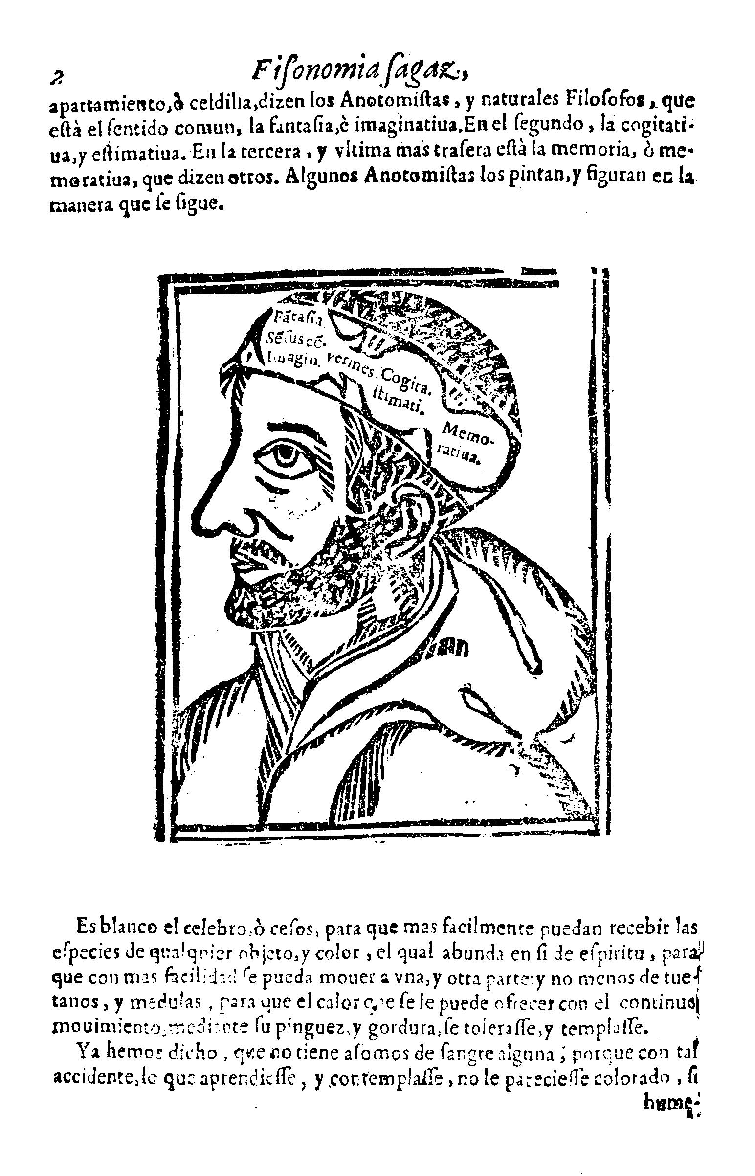 Archivo:Filosofía sagaz y anatomía de ingenios - Página.png ...