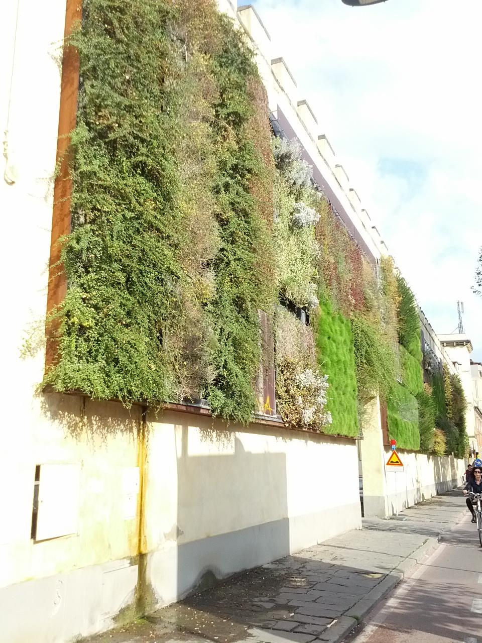 File giardino wikipedia for Giardino verticale