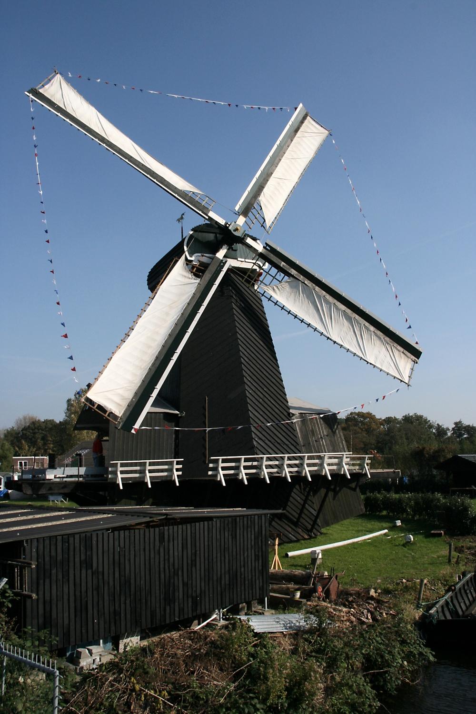 De Eenhoorn Haarlem Wikipedia