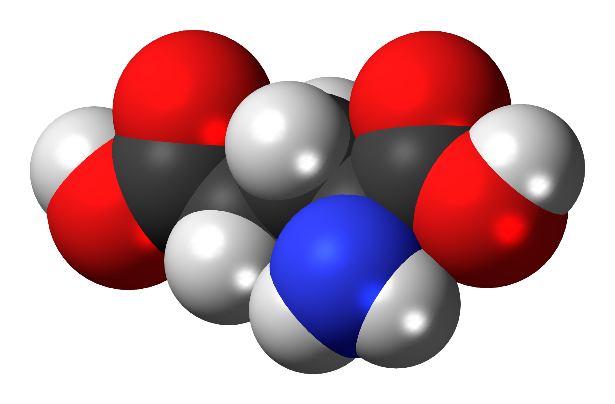 Glutamic Acid Wikipedia Bio Ball Isi 50
