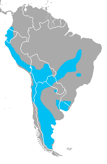 Crude map of the range of the pampas cat