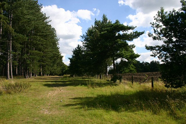 Little Ouse Path, Two Mile Bottom - geograph.org.uk - 518170