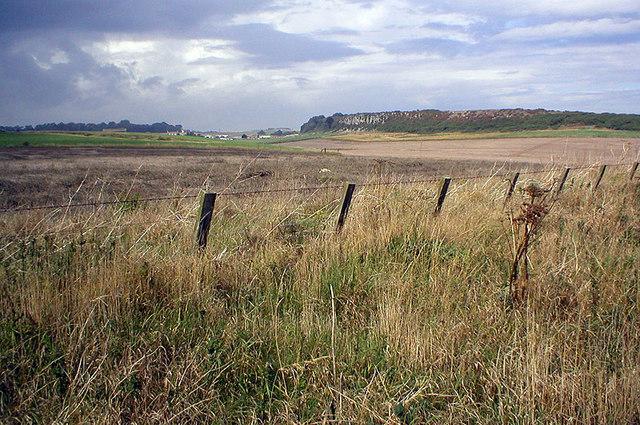 Long Heugh - geograph.org.uk - 227020