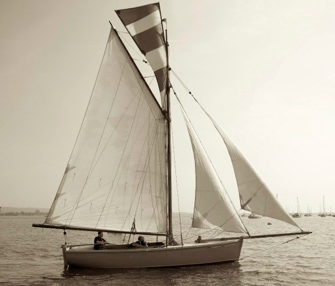 File:Nellie2010.png