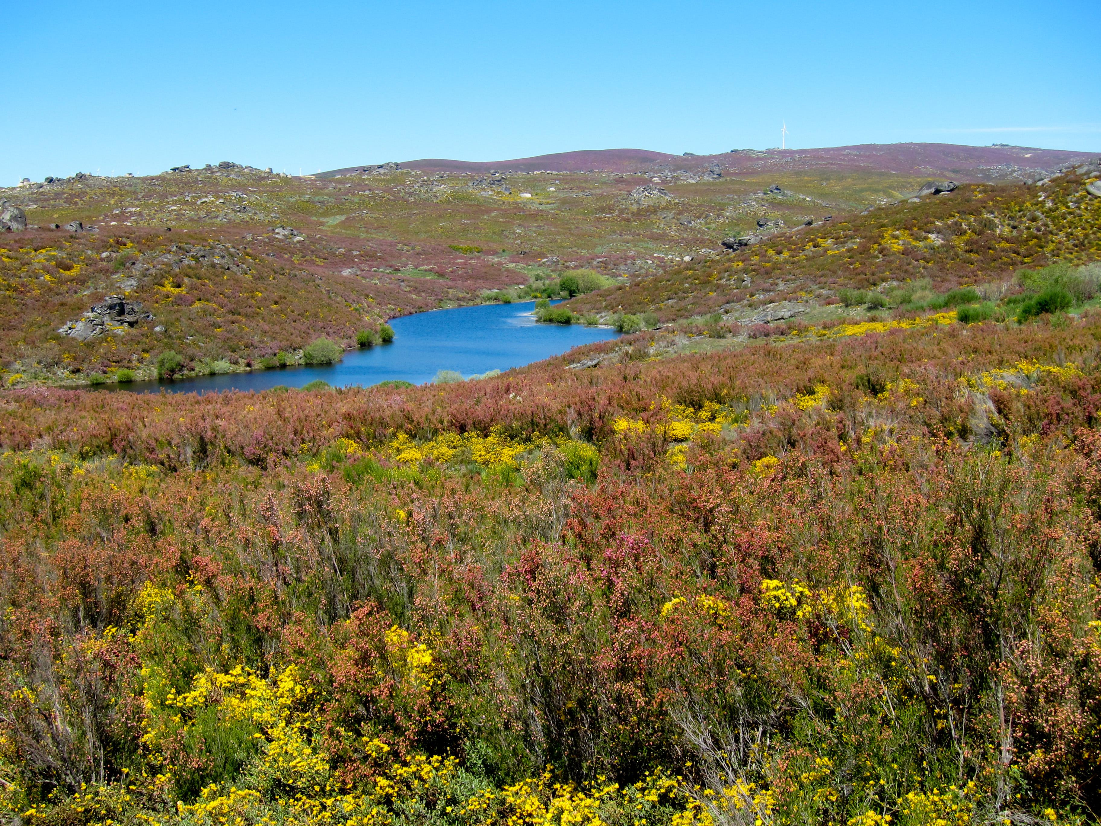 Parque_Natural_de_Montesinho_Porto_Furado_trail_%285733160672%29.jpg
