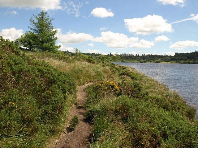 Path by Fernworthy Reservoir - geograph.org.uk - 897306