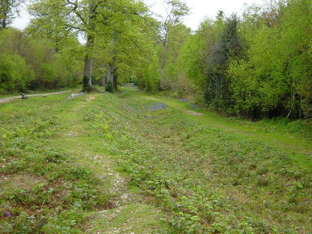 Slindon Estate Park Pale - geograph.org.uk - 166121