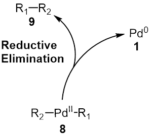 Suzuki Coupling Reductive Elimination