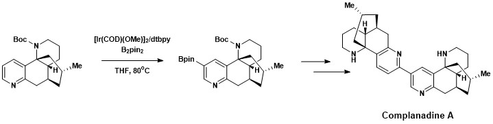 Synthesis of complanadine A