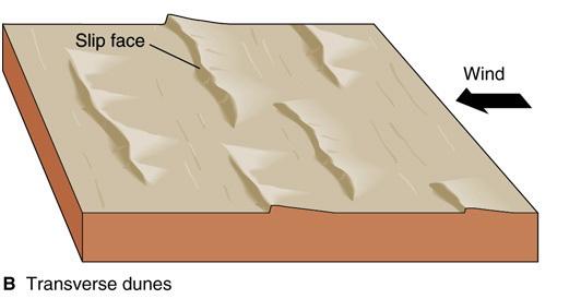 Tranverse dune