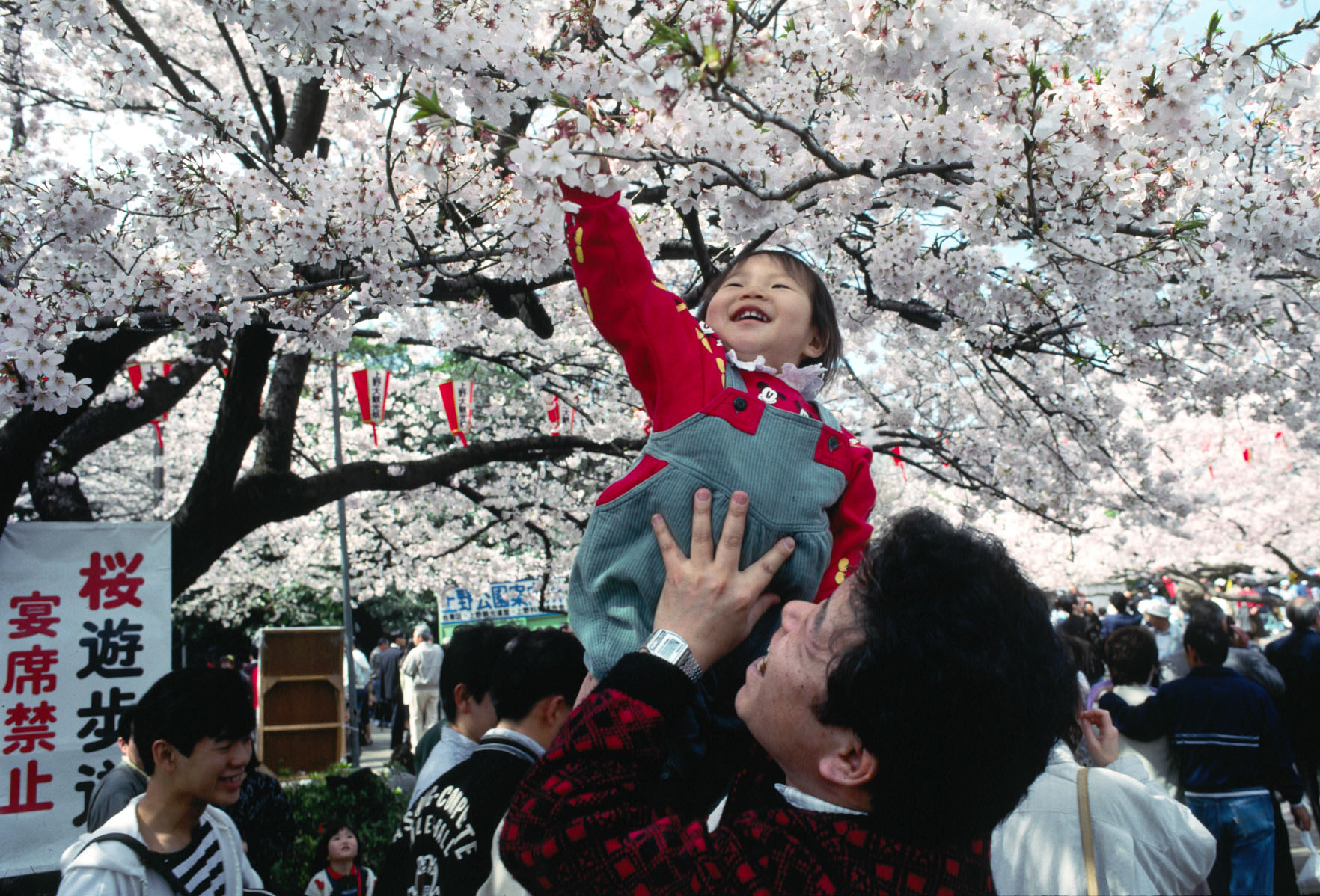 http://upload.wikimedia.org/wikipedia/commons/e/e1/UenoParkHanami.jpg