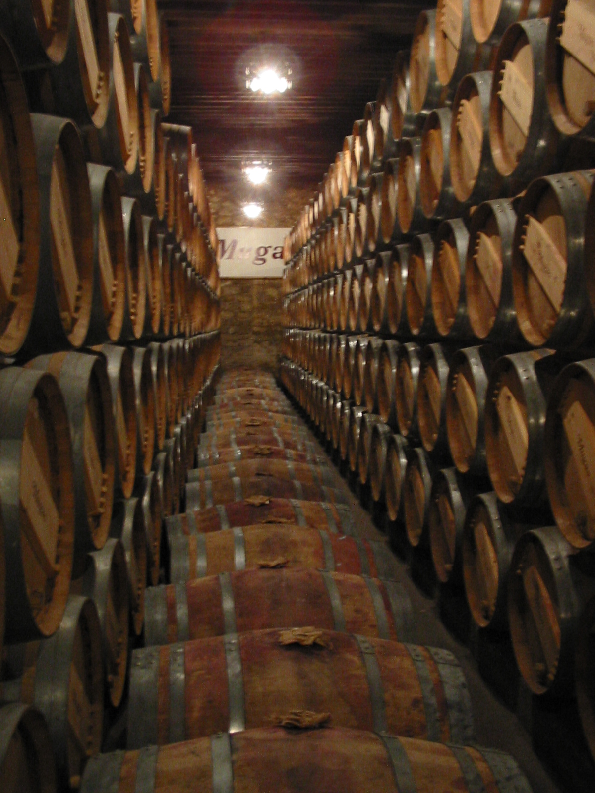 File wine barrels in la wikimedia commons - Barriles de vino ...