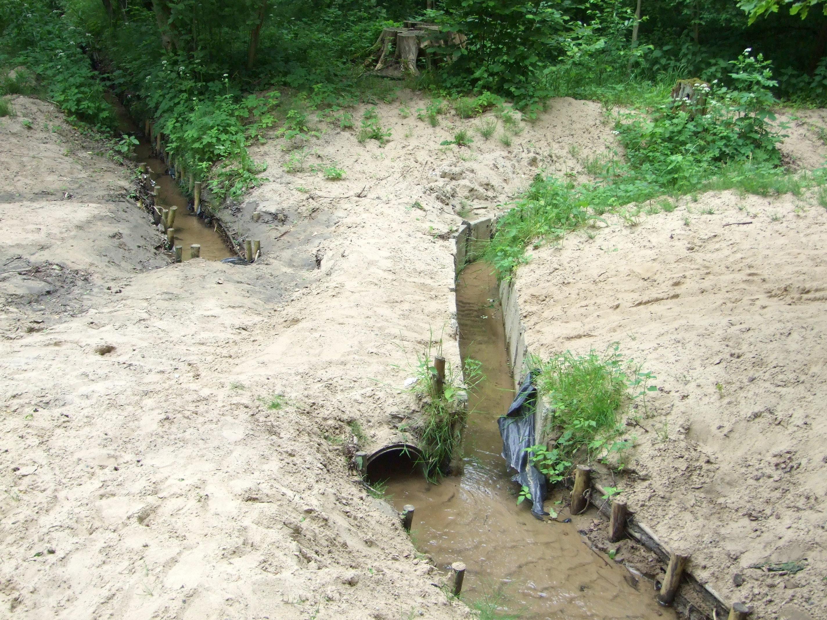 Zielonka (strumień)