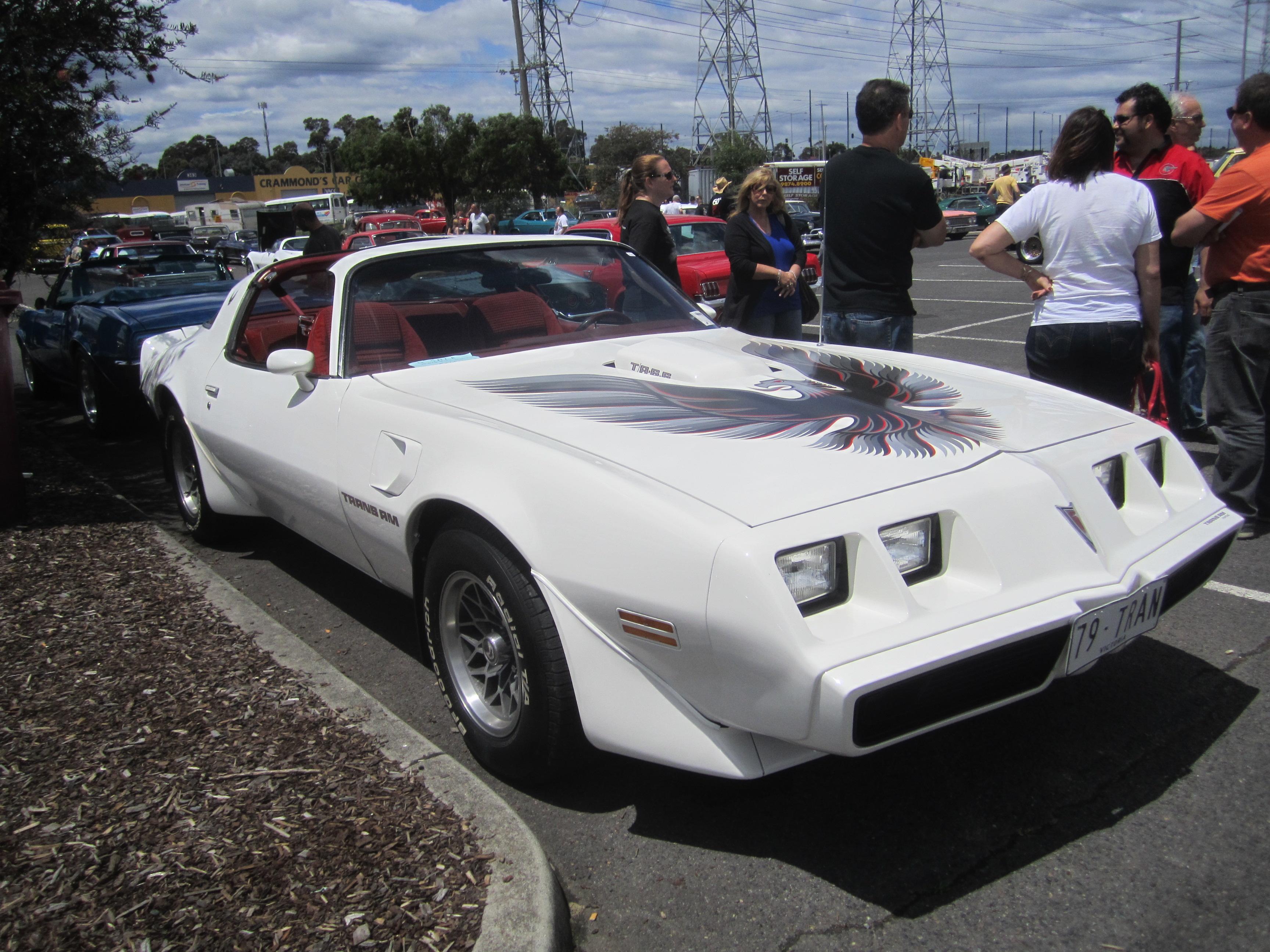 File 1979 Pontiac Firebird Transam Jpg Wikimedia Commons