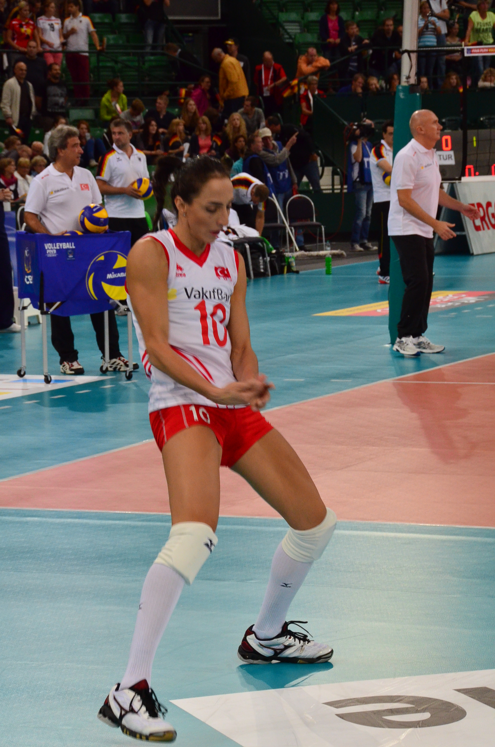 Volleyball Em