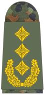 331-Generalleutnant