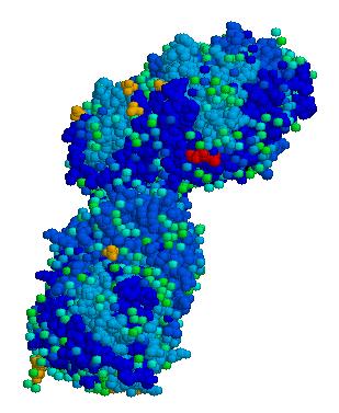Acid beta glucosidase.png