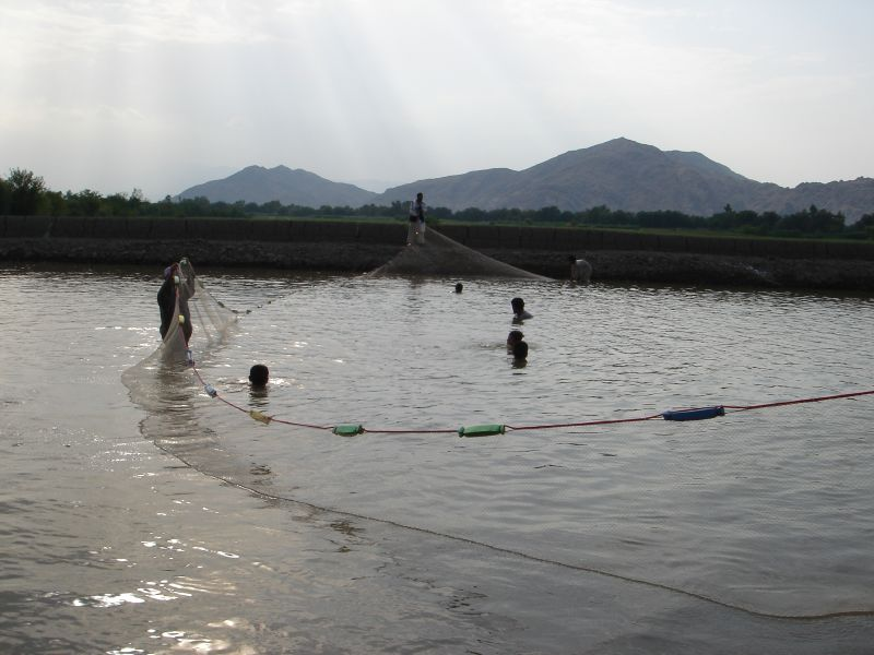 File:Afghan fishermen.jpg