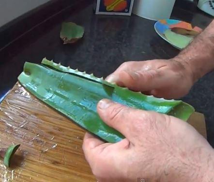 Image result for Aloe vera gel mask