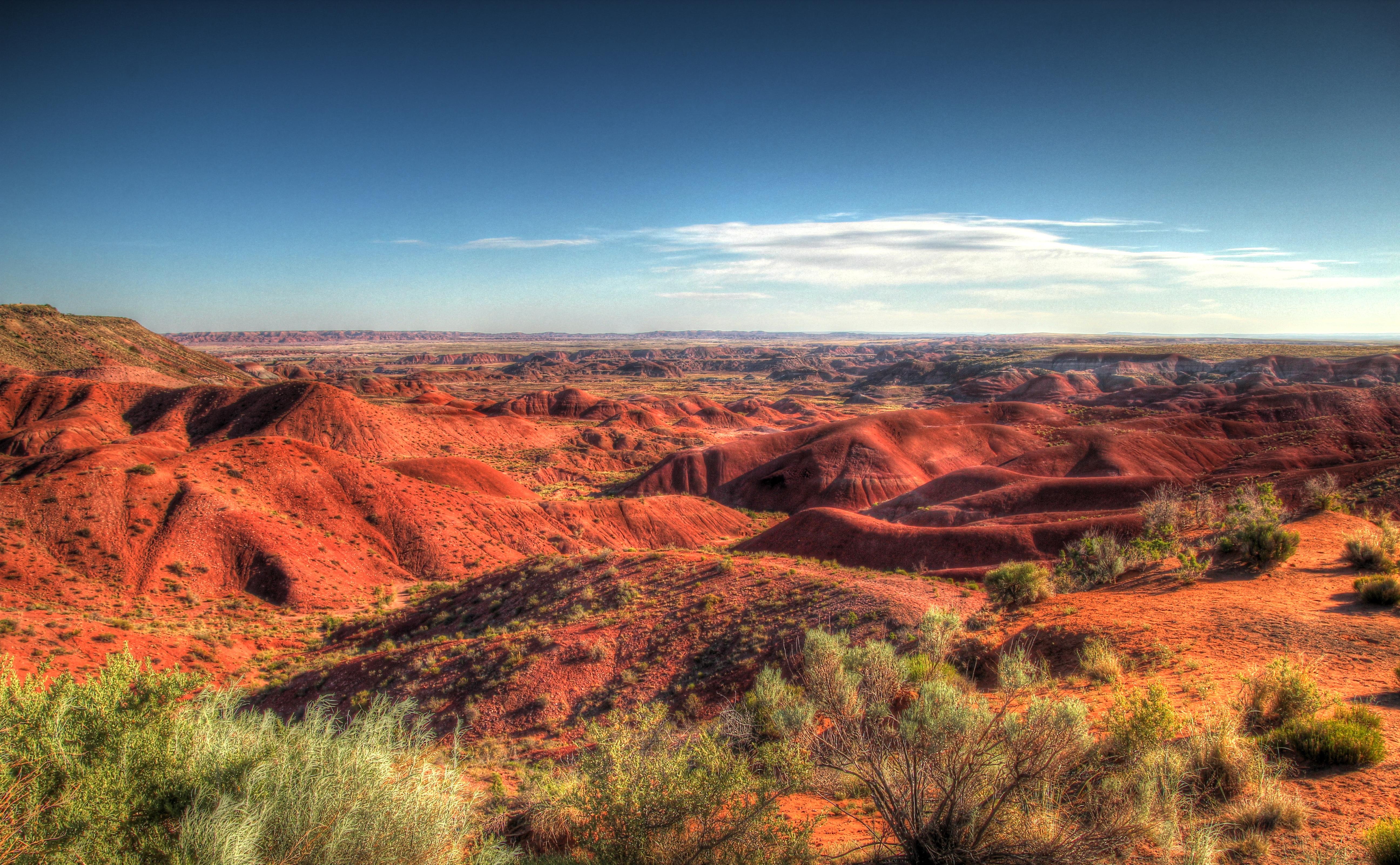 Painted Desert (Arizona)