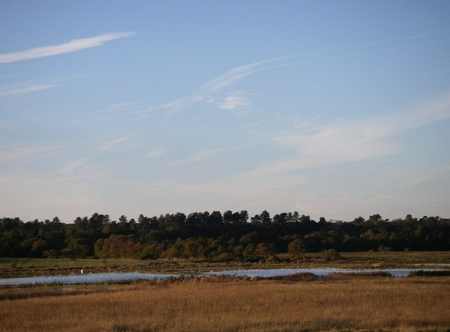 Dingle marsh and Dunwich Forest - geograph.org.uk - 274585