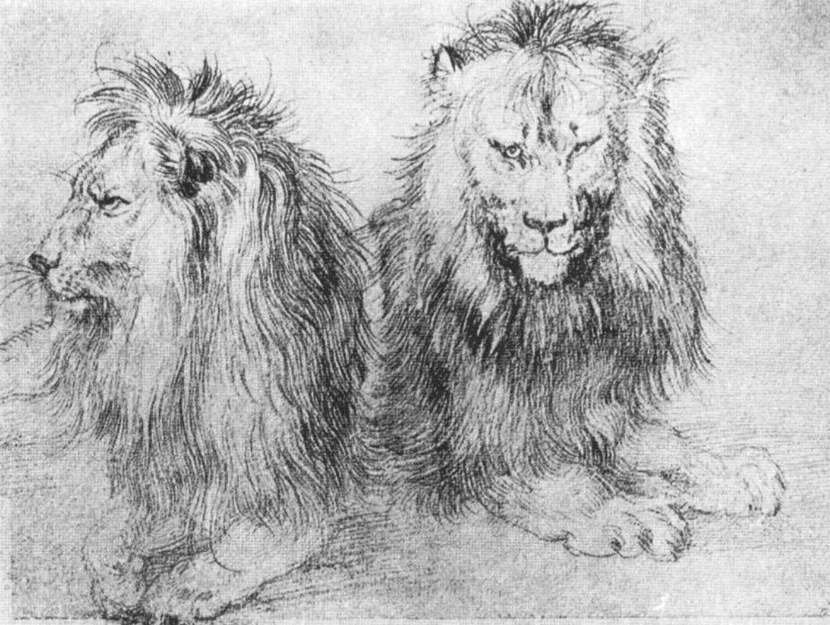 File Durer lions  sket...