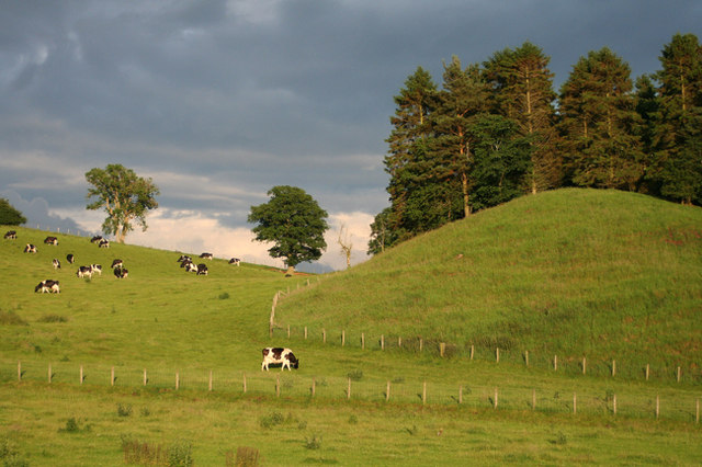 Farmland Little Salkeld - geograph.org.uk - 494681