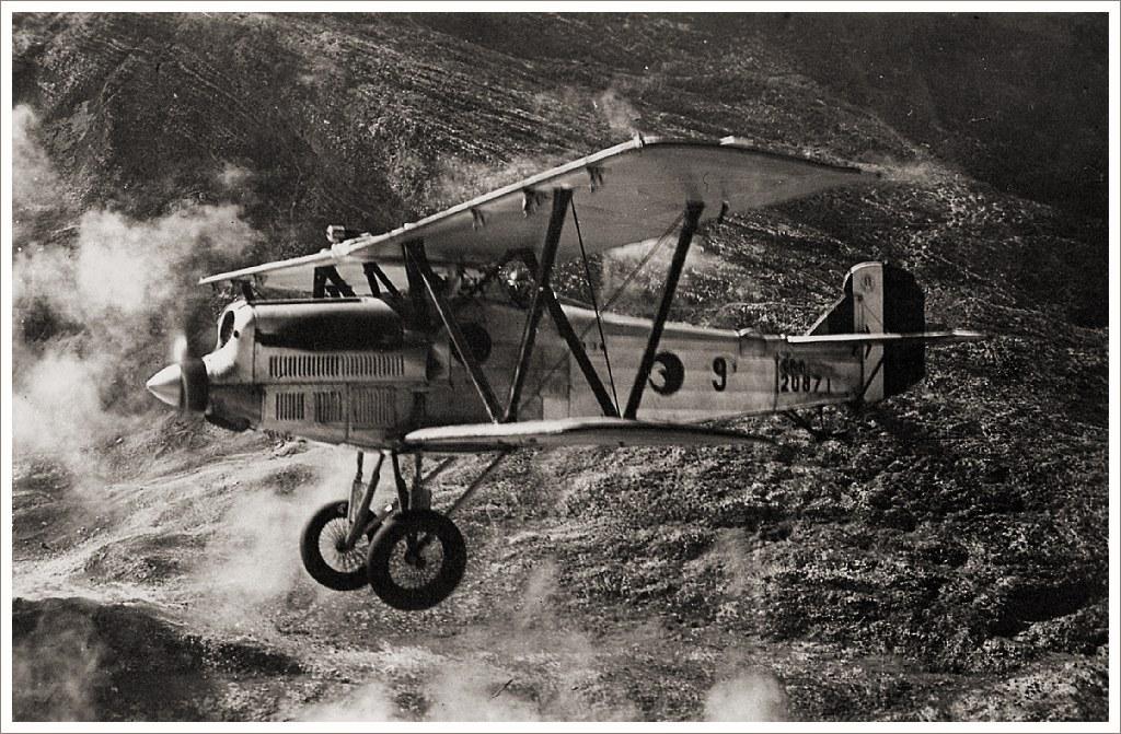 CR.20bis в полете