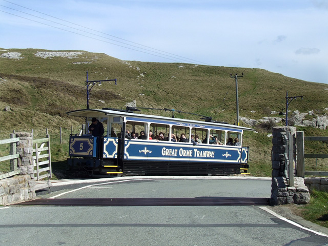 File:Great Orme Tramway - geograph.org.uk - 159269.jpg