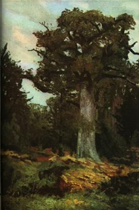 Stejarul.jpg
