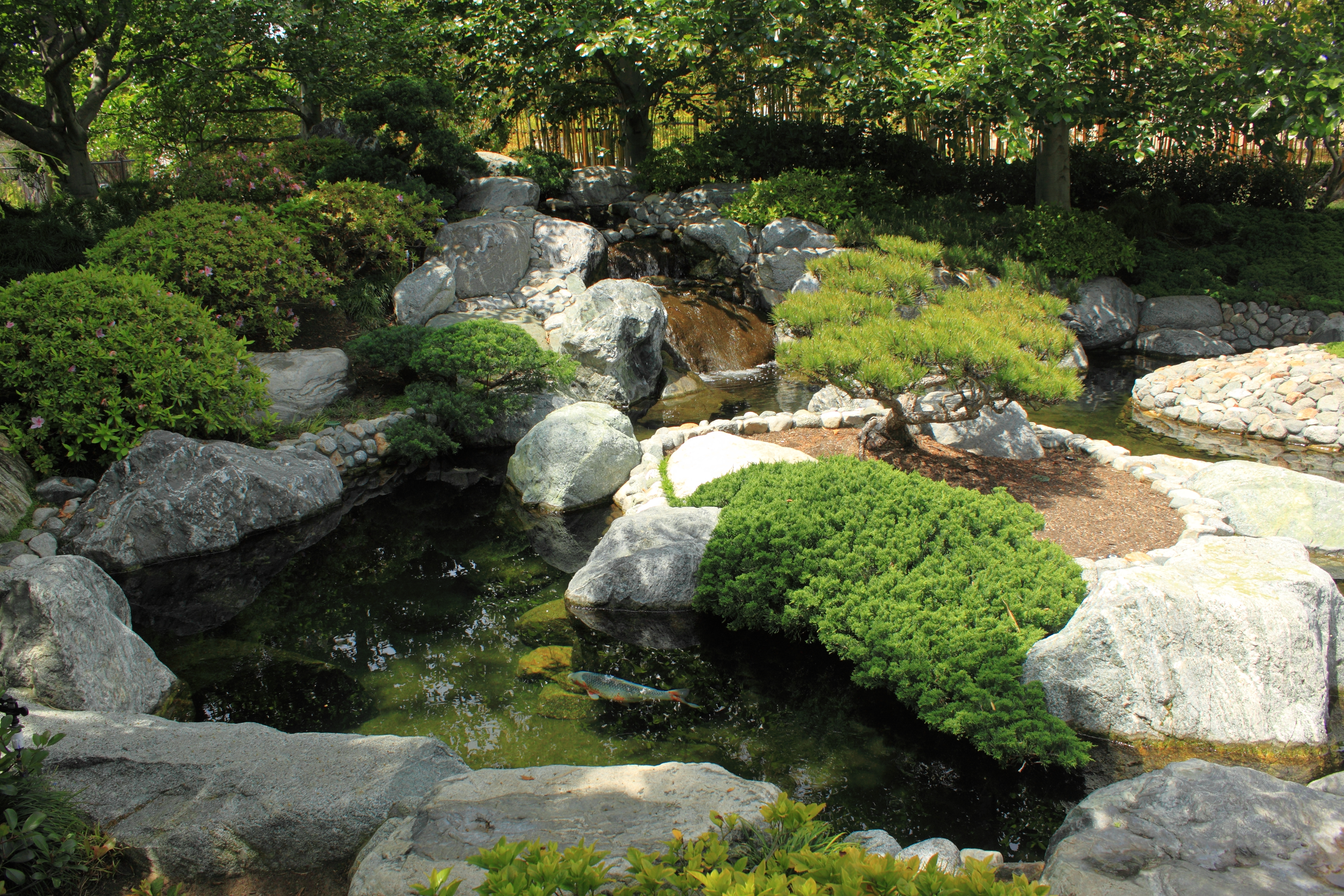 filejapanese friendship garden path koi pond 4jpg