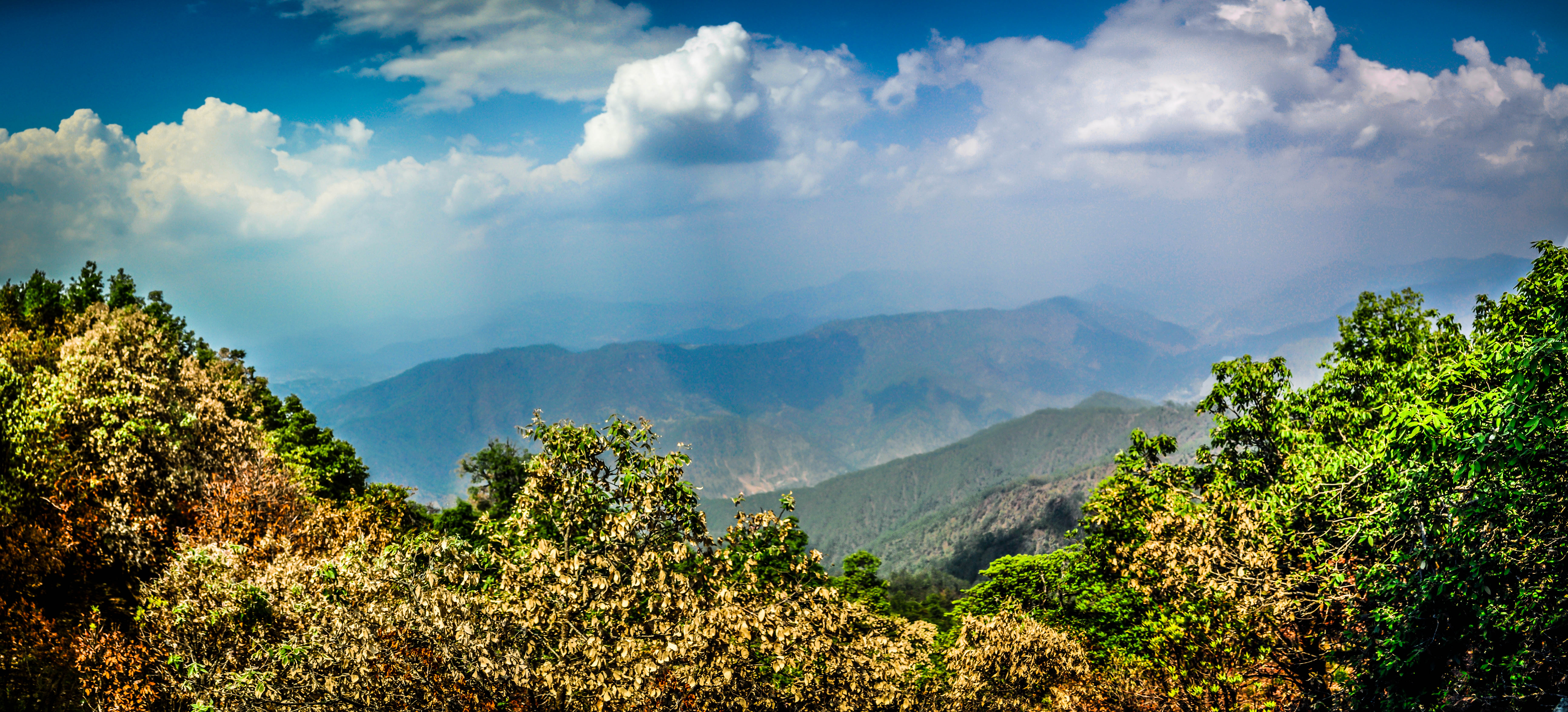 Binsar, Uttarakhand - A Fascinating Breakthrough. 6