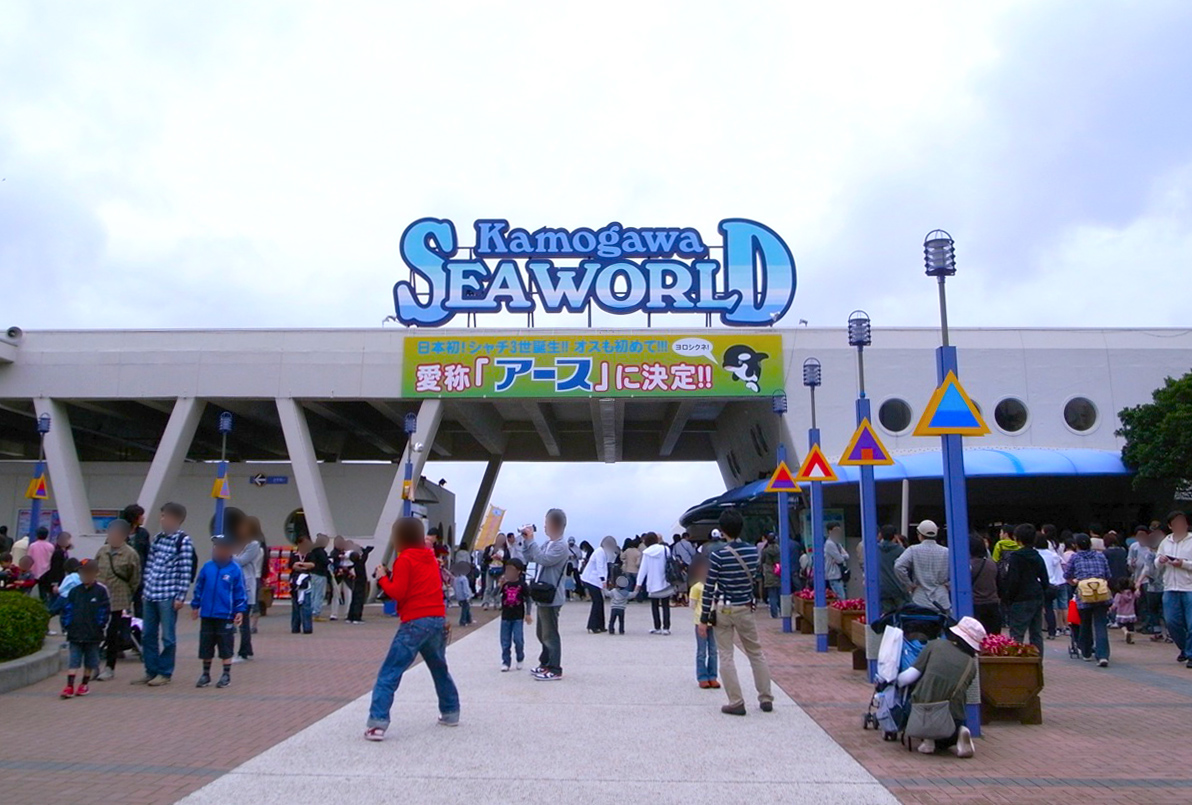 File:Kamogawa sea world.jpg - Wikimedia Commons