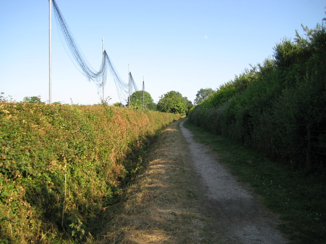 London Colney, Watling Chase Timberland Trail - geograph.org.uk - 1386321