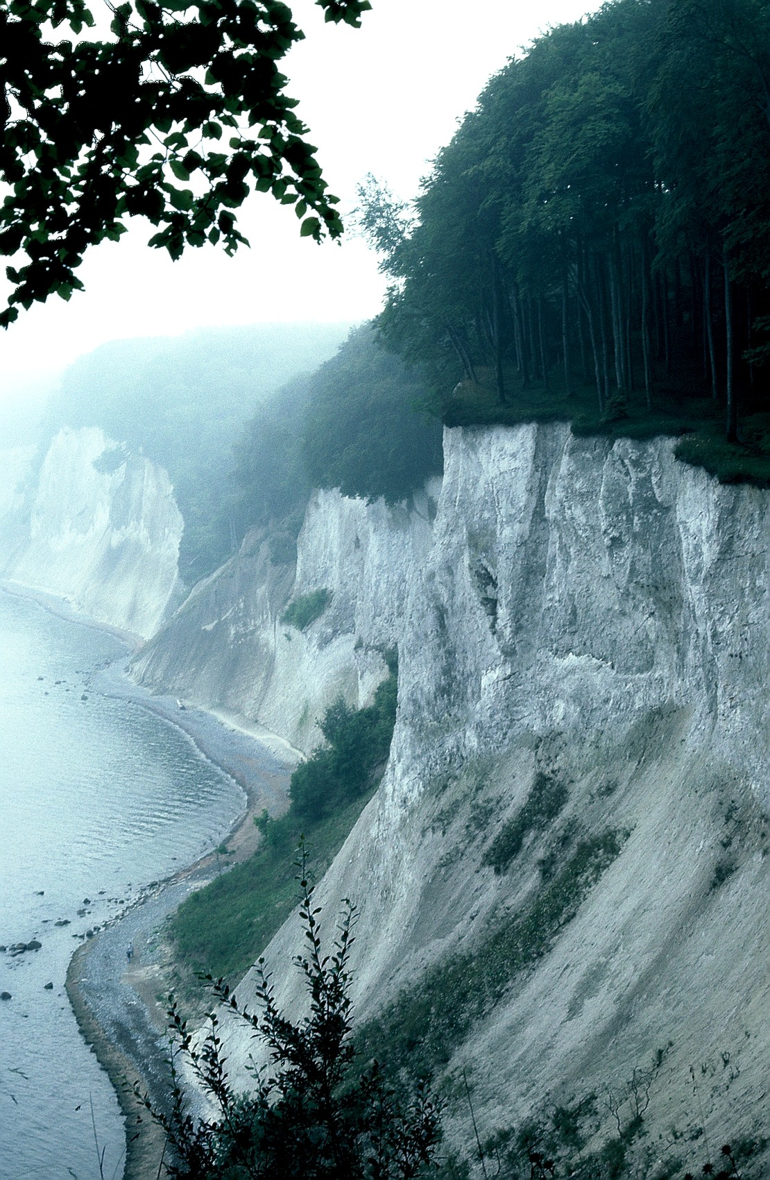 Jasmund National Park - Wikipedia