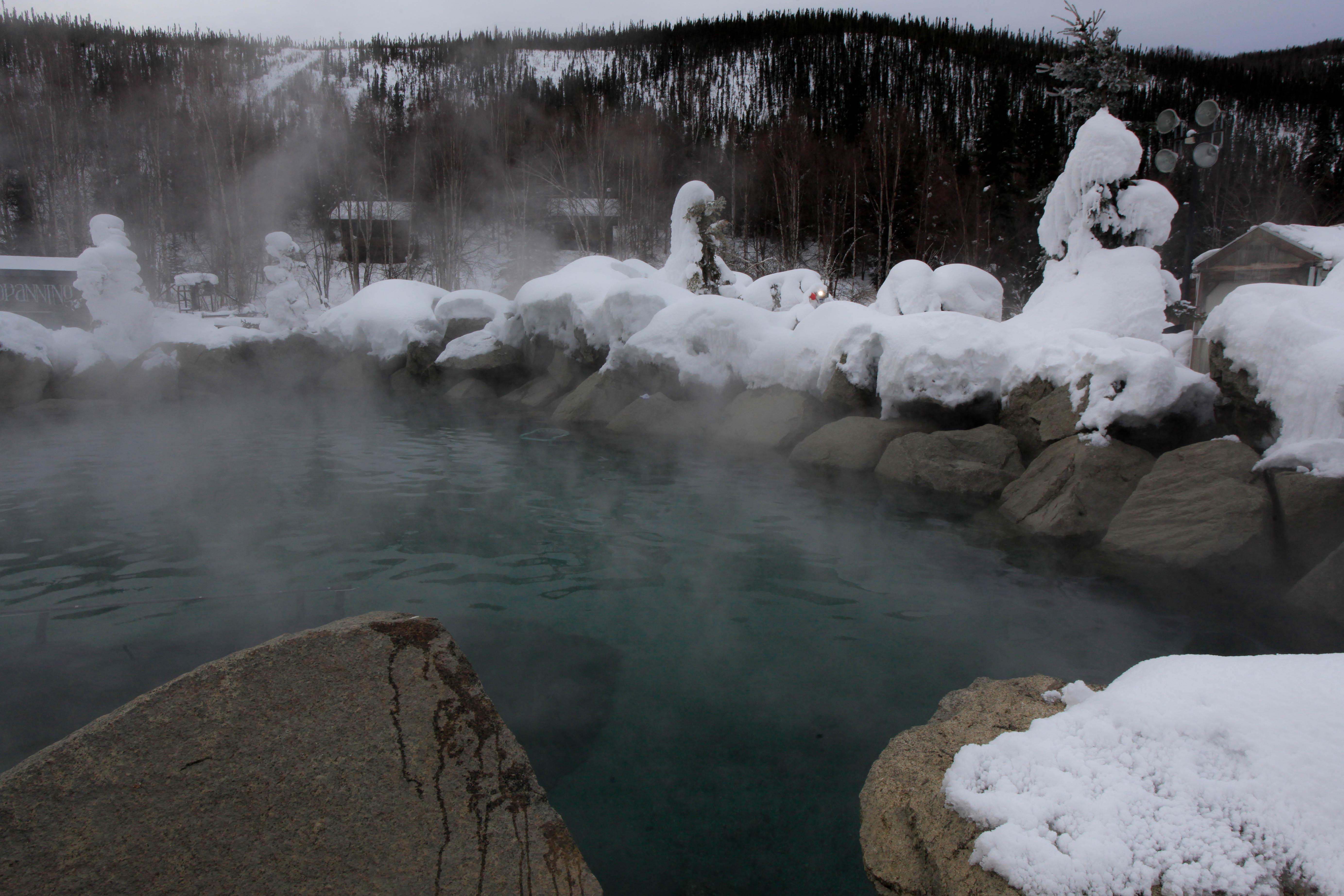 Hot Springs Hot Tub Dog Dish Shape