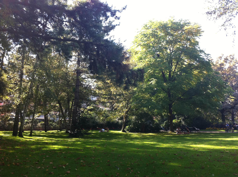 File Pelouse jardin du Luxembourg Paris Wikimedia mons
